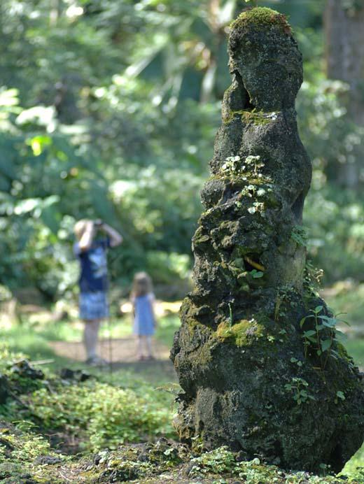 Lava-tree