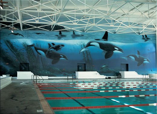 Whaling_wall_521